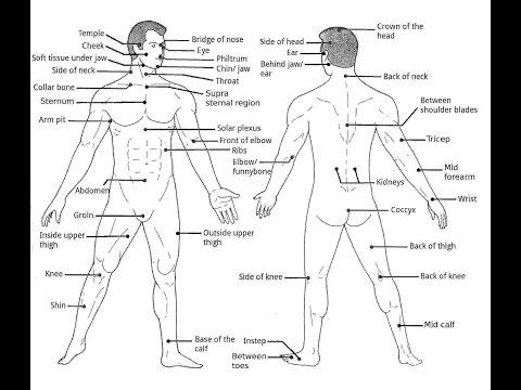 Karate-Do Core Principles - Sensei Rick Hotton [HD]