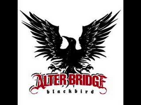 Alter Bridge Rise Today