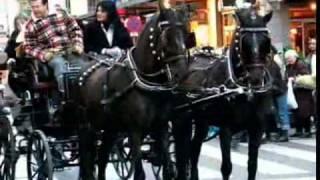 La Passada de Sant Antoni Abat i els tres tombs de Sabadell 2008