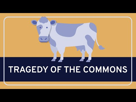 PHILOSOPHY - Rational Choice Theory: Tragedy of the Commons [HD]