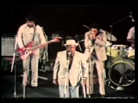 Willie Dixon & The New Generation of Chicago Blues 1977 - Germany