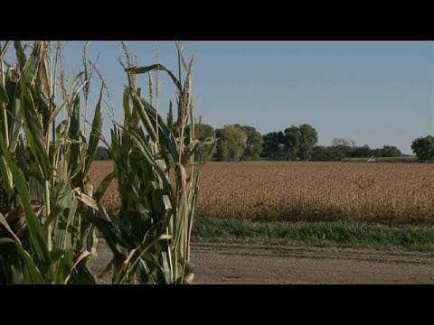 Nebraska Farm Economy - Eric Thompson - June 16, 2017