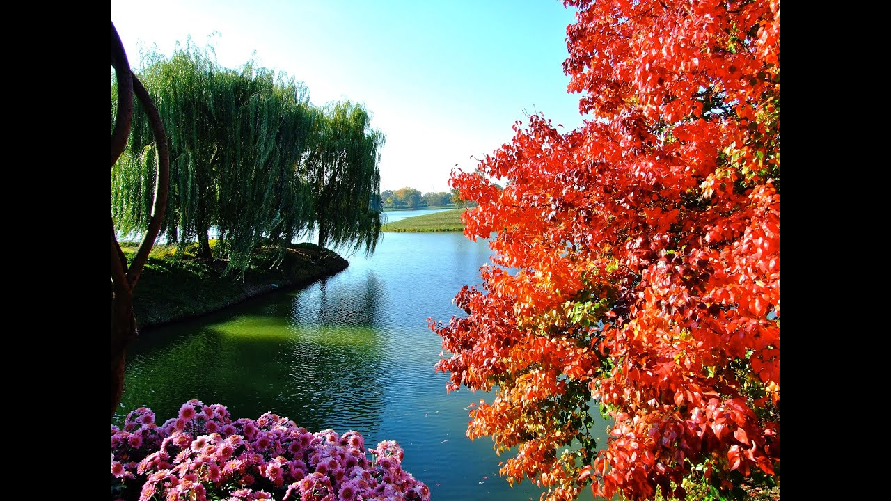 Chicago Botanic Garden   Fall   YouTube