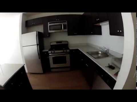 Lakeshore East Chicago Apartments | Coast | 1 Bedroom  | Unit #310 | GoPro Tour