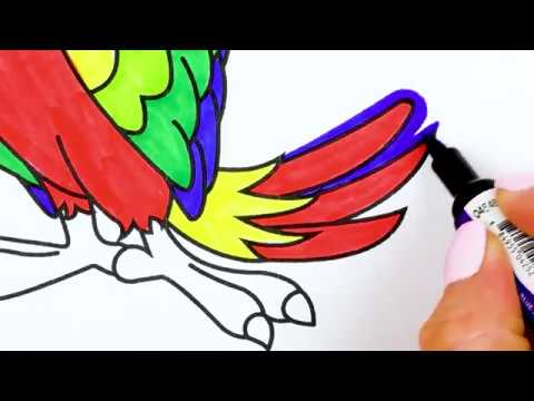 How to Draw a Parrot - Coloring pages for Kids / Tic Tac Paint