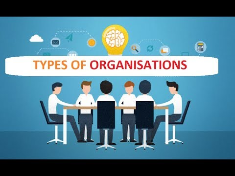 Different Types of Formal and Informal Organisations in Public Administr...