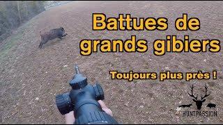 CHASSE AUX GRANDS GIBIERS 2019 - Toujours plus près !