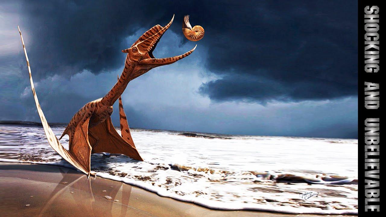 Картинки по запросу Динозавры летающие картинки