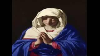 Gặp Gỡ Đức Kitô | Nhạc Thánh Ca | Những Bài Hát Thánh Ca Hay Nhất