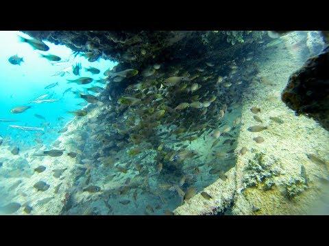 GoPro Try Dive at Million Dollar Point - Espiritu Santo, Vanuatu (HD) - Length 8:29