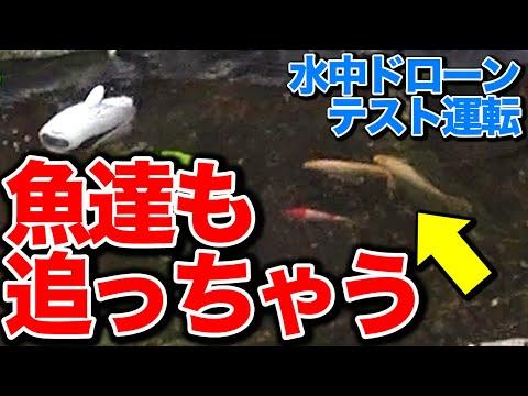 【水中ドローン】テスト運転 水中動画撮ってみた 「ROBOSEA BIKI」  2019.10.5