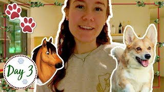 dyco komt logeren ik ga met marley op tour   felinehoi vlogmas 3