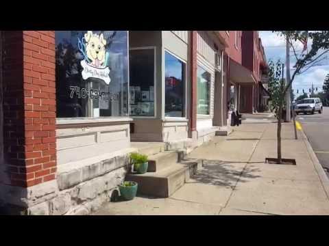 Take a tour of Dirty Dog Rehab Pet Salon!!