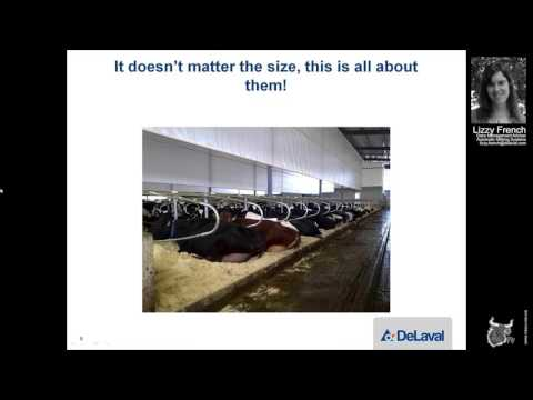 DeLaval - Transitioning into the Robotic World