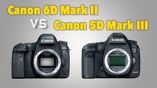 Обзор-тест Canon 6D Mark II в сравнении с Canon 5D Mark III