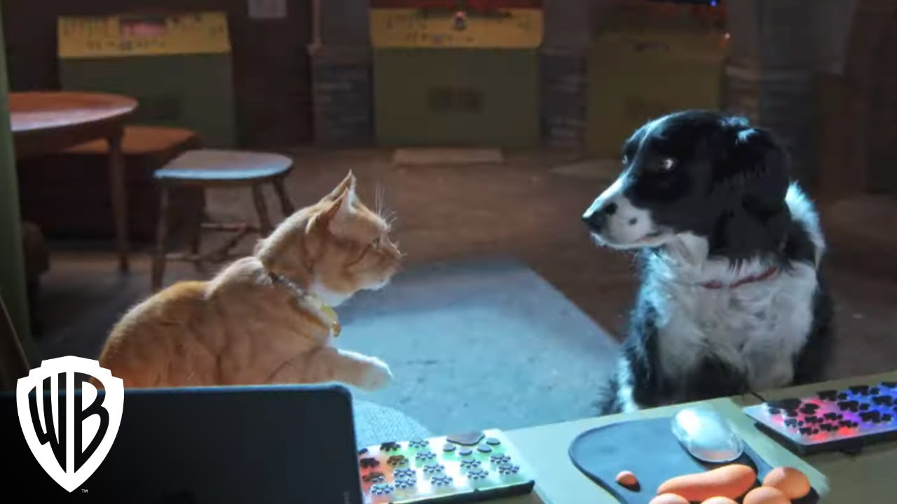 Download Cats & Dogs 3: Paws Unite!   Spyware   Warner Bros. Entertainment