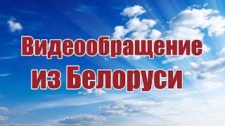 видео: Видео обращение от Дмитрия из Белоруси | ALNADO