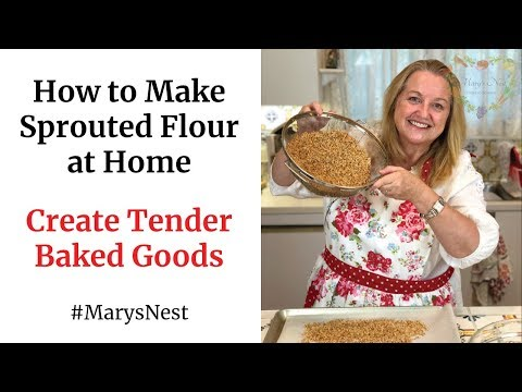 how-to-make-sprouted-flour-at-home---how-to-sprout-grains