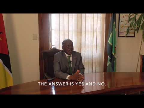 Full interview with the Mayor of Maputo David Simango