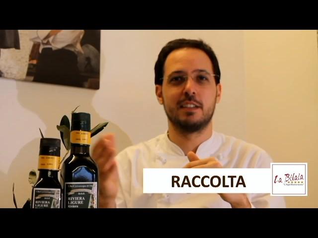 Un racconto sull'Olio DOP da La Bilaia PARTE 2/3