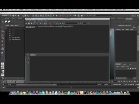 Script Editor: Intro