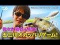 佐々木勝也が挑む! 五三川オカッパリゲーム!|Ultimate BASS by DAIWA Vol.137