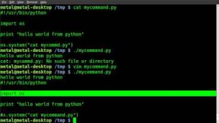 Python Basics - calling system commands (A cheat for BASH users)
