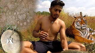 Primitive Technology - Found Tiger Teeth in forest, Making Dollar from Tiger Teeth