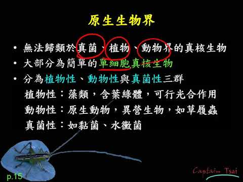 10701高二基礎生物ch5 2 05五界說 原核生物界原生生物界真菌界簡介二數