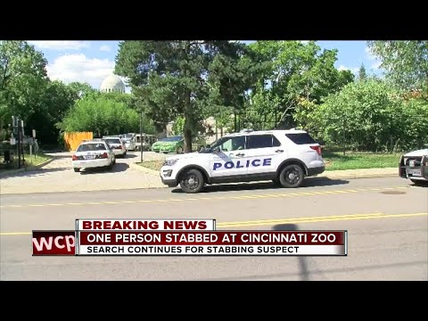 PD: Man cut in the throat at Cincinnati Zoo