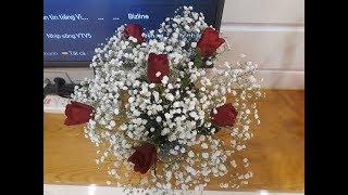 Cắm hoa-Cắm hoa hồng với baby đơn giản để bàn chỉ mất vài phút