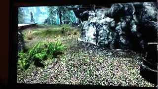 Elder Scrolls V : Skyrim - where to find quarry stone in falkreath
