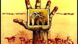 Agoraphobic Nosebleed - Gringo