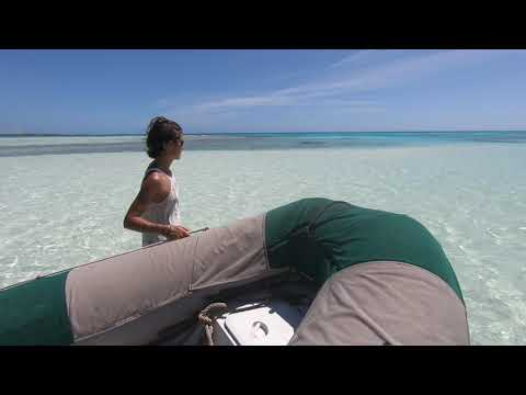 Deuxième vidéo des Tuamotus