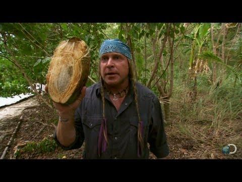 Cody vs. Joe:  a Coconut  Dual Survival