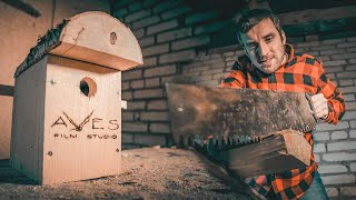 Дом для птиц своими руками Film Studio Aves