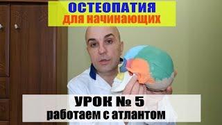 Уроки остеопатии Урок № 5 Работа с атлантом Почему нельзя делать правку   атланта #правка атланта#