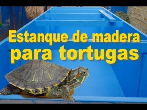 Estanque de madera para tortugas youtube for Estanque artificial para tortugas