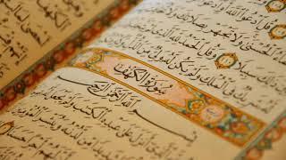القرأن الكريم / صوت يجعلك ترتاح نفسيا / quran al karim