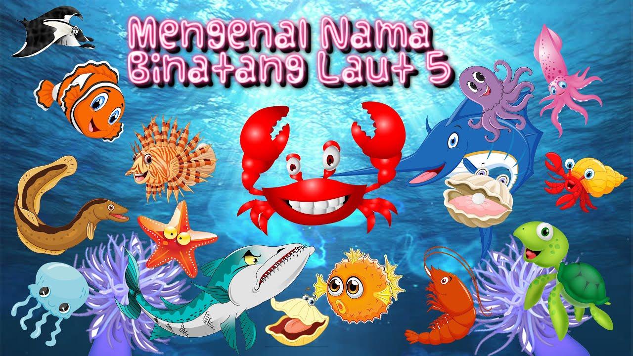 5600 Nama Gambar Hewan Hewan Laut Terbaru