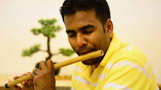 Devani Budun Lesa.. Sinhala Music Instrumental- Flute...