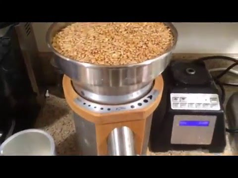 Pizza Dough Starting From Whole Grains