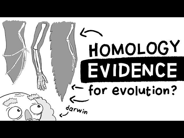 Is Homology Evidence for Evolution? | Long Story Short