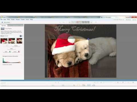 Picasa Tips On Editing A Picture