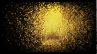 I Don't Want Love- The Antlers (w/lyrics) Burst Apart