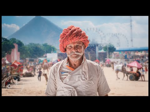 Albelo Jaipur | Short Film of the Day