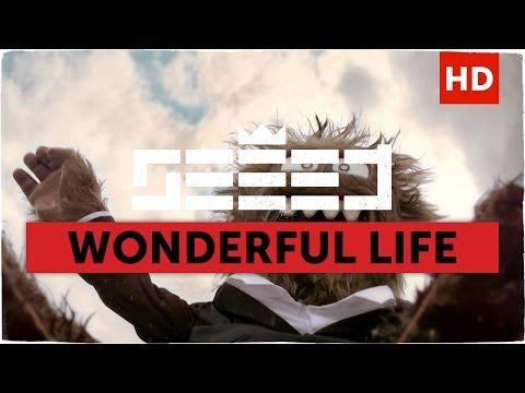 Seeed - Wonderful Life (Aargh Video)