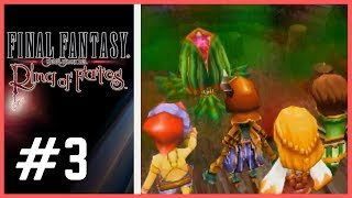 Final Fantasy Crystal Chronicles: Ring of Fates (DS) ✮ 3 ✮ Identity Crisis