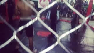 The Pitbull /// finishing his mixed martial arts combat superior......