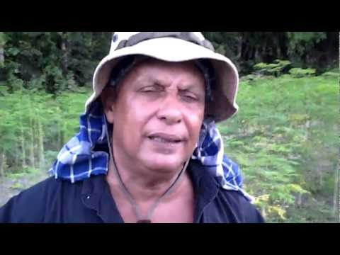 Pikin Sranan bio farm film Roel